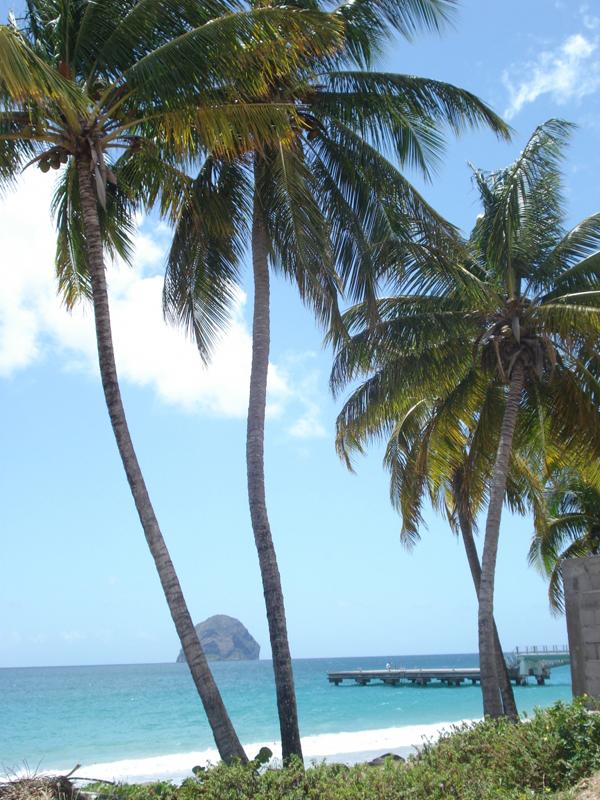 Rocher du diamant île de la Martinique